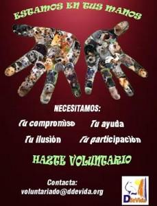 cartel-ddvida-asociacion-animales-voluntariado
