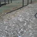 carteles electorales basura calle