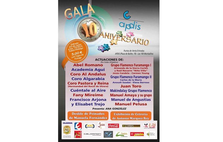 Apdis celebra su décimo aniversario con una gala benéfica