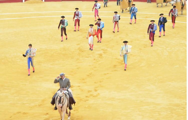 Ddevida sigue sin entender el apoyo municipal a los festejos taurinos