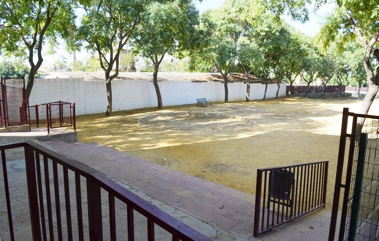 El colegio La Fontanilla asegura que «no existen focos de pulgas en el centro»