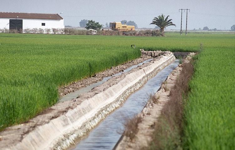 COAG denuncia que muchos agricultores aún no han percibido las ayudas de la PAC