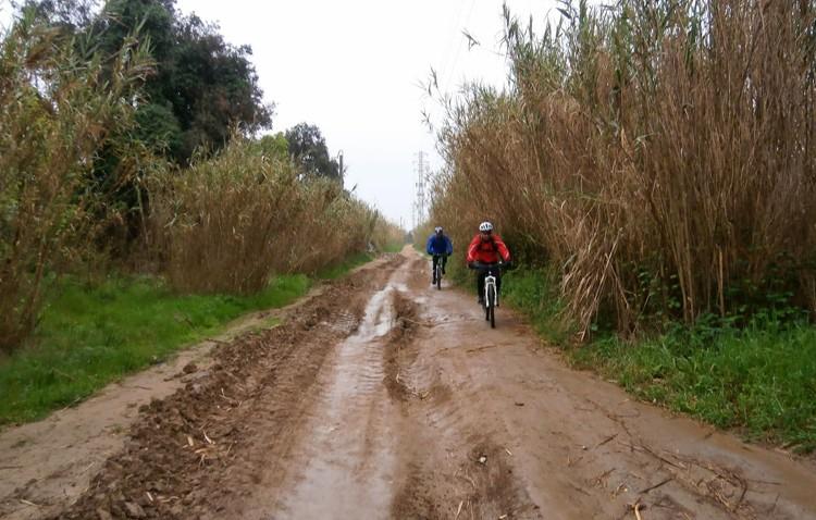 Las recientes lluvias torrenciales causan pérdidas millonarias a los agricultores de Utrera