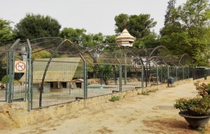 parque consolacion - zoologico animales 2