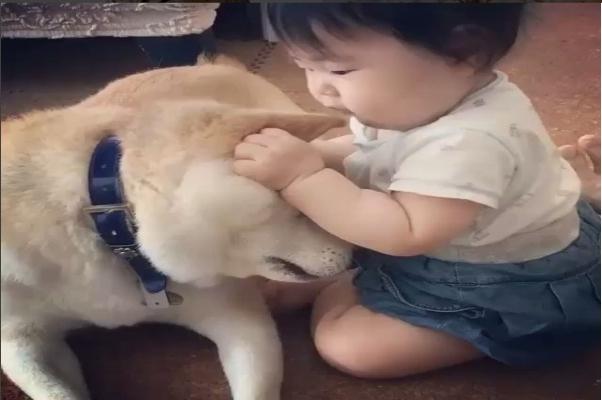 El tierno vídeo de un bebé con su perro que causa furor en las redes