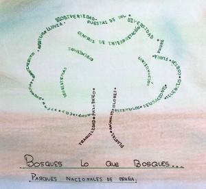 colegio sagrado corazon premio logo parque nacional