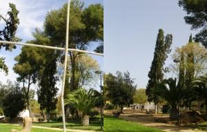 Imagen del antes y del después, donde se observa la desaparición de los árboles
