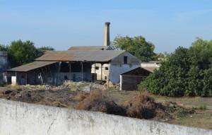 Una antigua fábrica de La Fontanilla, foco de una de las colonias felinas