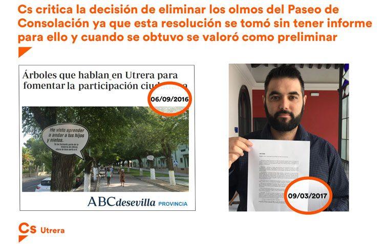 Ciudadanos desvela que el gobierno decidió eliminar los árboles del paseo en 2016 «sin tener el informe para ello»
