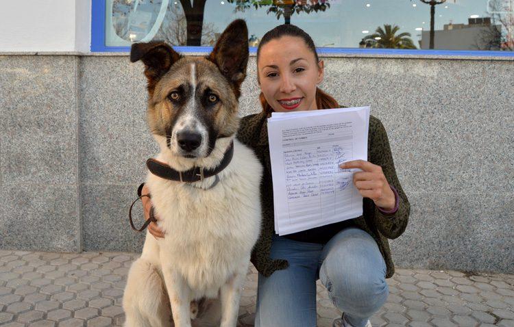Una campaña ciudadana para luchar por la creación de un refugio animal