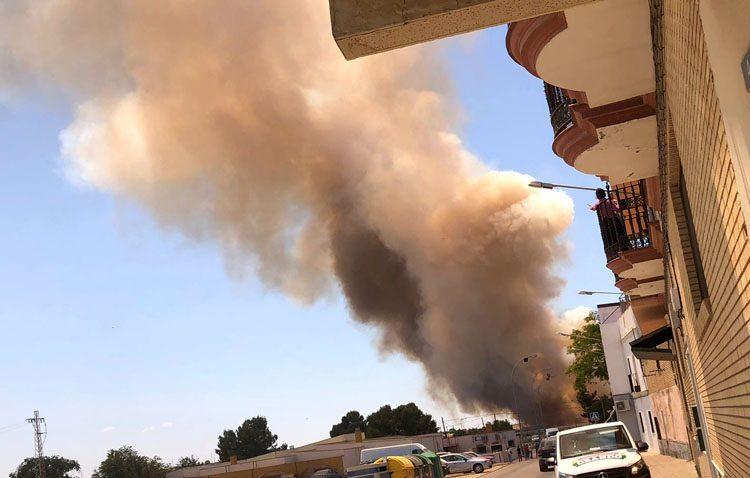 Un espectacular incendio arrasa 12 hectáreas de trigo a punto de ser recolectadas en Utrera (VÍDEO)