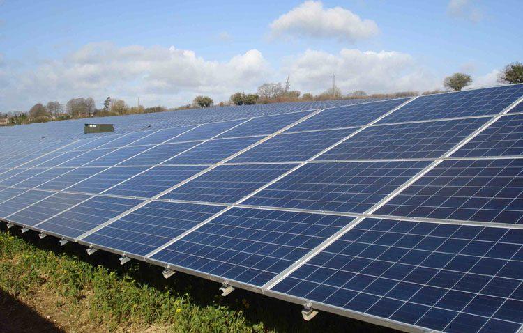 La constructora de la planta fotovoltaica de Don Rodrigo busca un ingeniero técnico, un electricista y un guarda