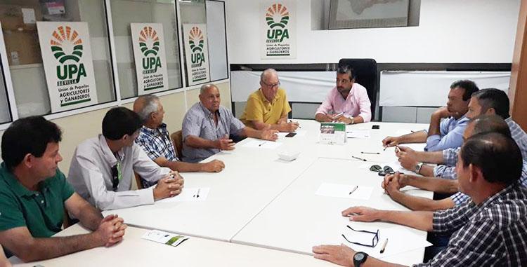 Las cooperativas utreranas se reúnen con UPA-Sevilla ante la amenaza para el sector de la aceituna por los aranceles de Estados Unidos