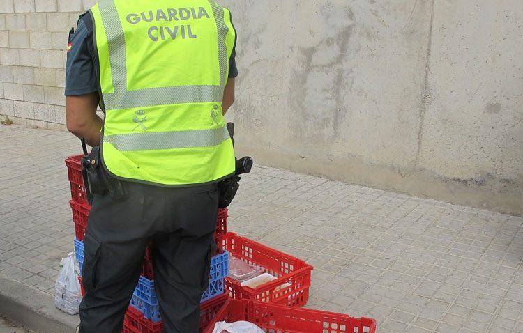 Más de 100 kilos de alimentos no aptos para el consumo, retirados durante la Feria de Consolación