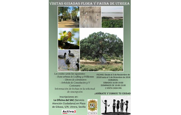 Un programa de visitas guiadas para conocer la flora y fauna de Utrera