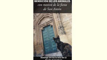 Acto de bendición de animales en la parroquia de Santiago con motivo de San Antón