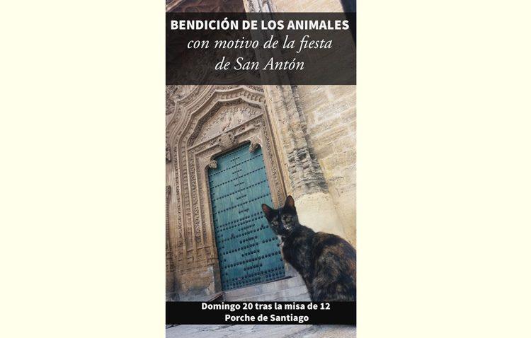 La parroquia de Santiago organiza un año más su acto de bendición de animales con motivo de San Antón