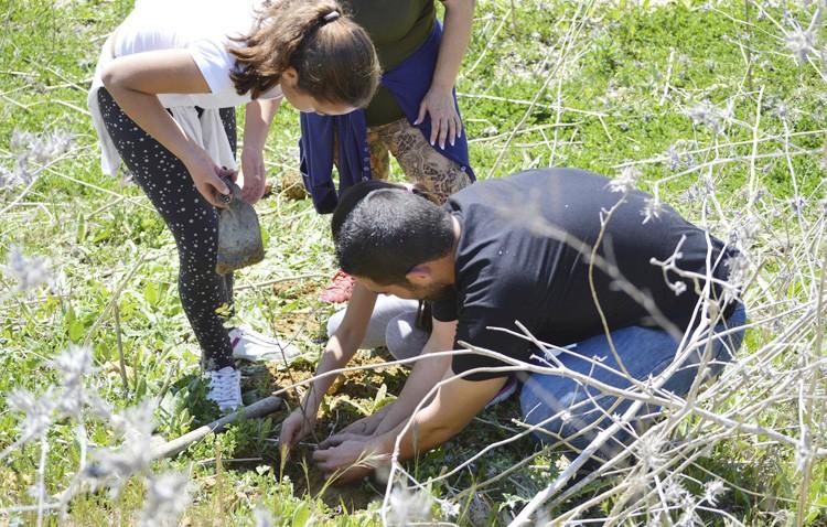 El colegio Coca de la Piñera organiza una plantación de árboles