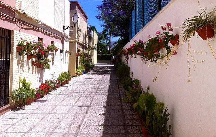 46.000 euros en premios para los jardines más bonitos de Utrera