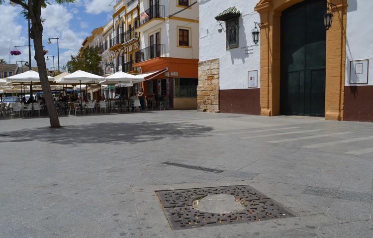 El Ayuntamiento repondrá casi 850 árboles en el casco urbano de Utrera