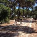leptis-excursion-ciclismo-sanlucar-de-barrameda-2