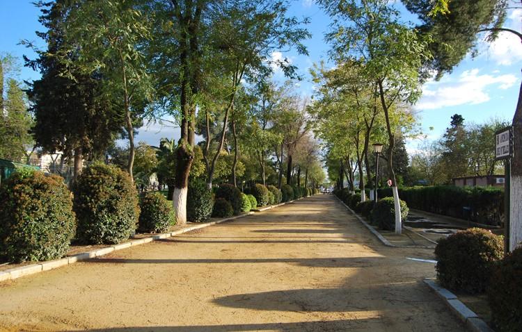 El gobierno local (PSOE-IU) privatiza el mantenimiento de las zonas verdes de Utrera con un coste de 340.000 euros