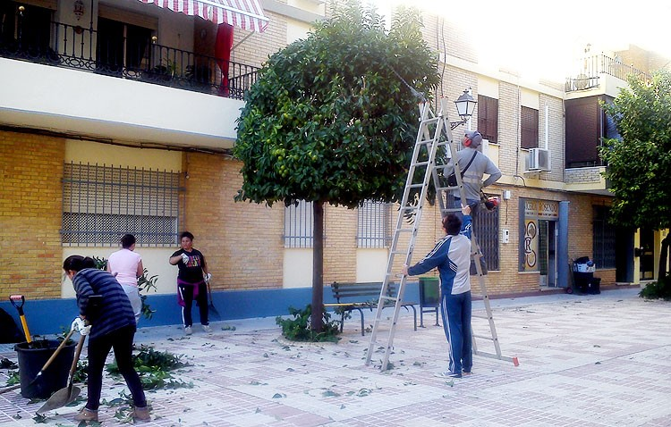 Un nuevo plan temporal de empleo de Diputación beneficiará a 103 utreranos