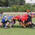 club-rugby-utrera-torneo-xv-dragones-zafra-feria-san-miguel