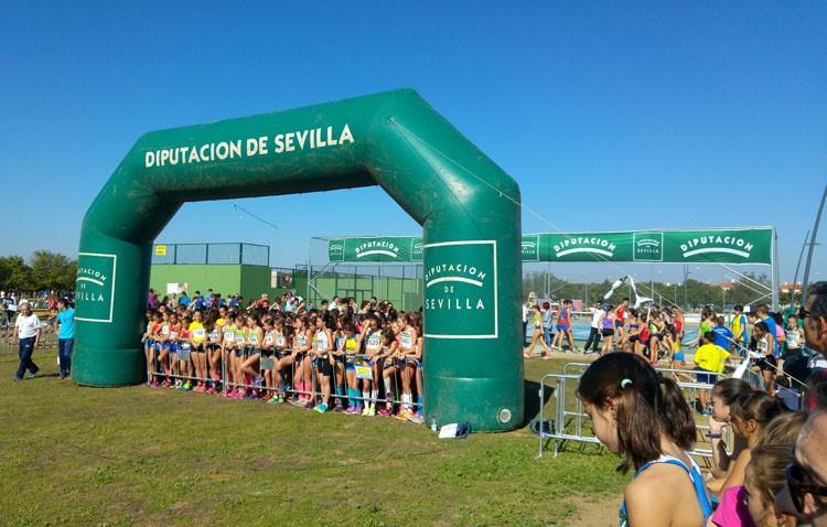 El Ayuntamiento cifra en 90.000 euros la repercusión económica de la prueba de campo a través celebrada en Utrera