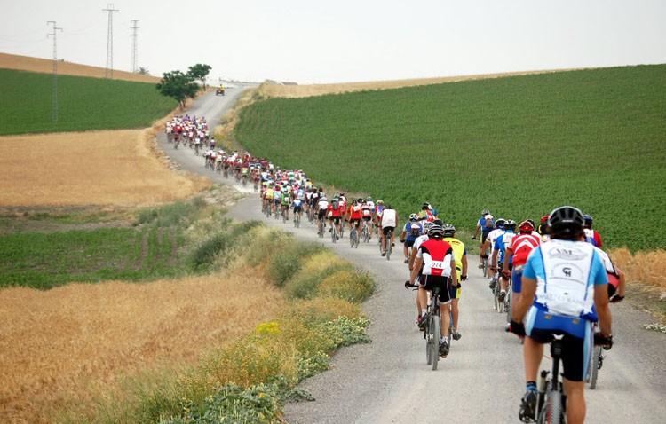 Contrarreloj en bicicleta por los caminos de Utrera