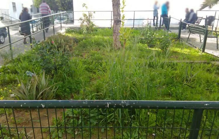 Podemos denuncia el «nulo mantenimiento» de los jardines de la barriada La Paz