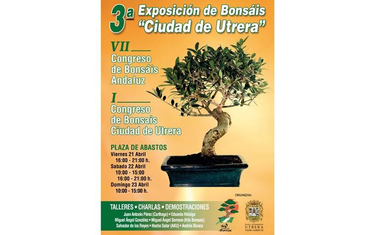 Utrera acoge su tercera exposición de bonsáis