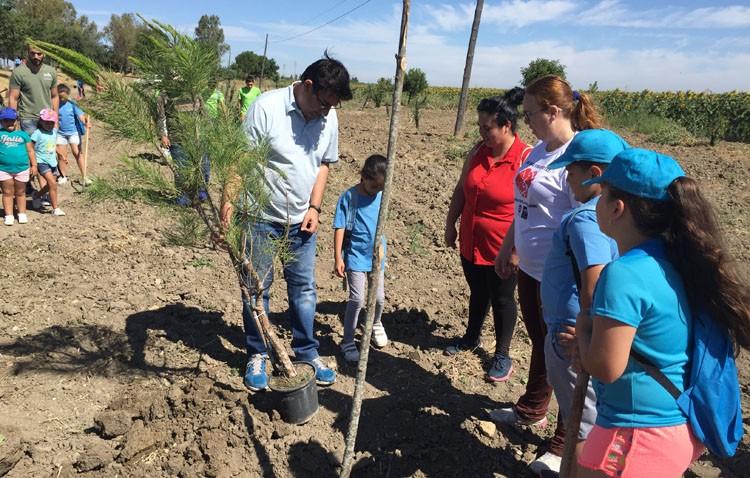 El PSOE realiza su plantación anual de árboles en Vistalegre