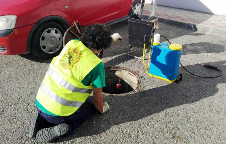 El servicio de control de plagas urbanas inicia su tratamiento contra las ratas y cucarachas