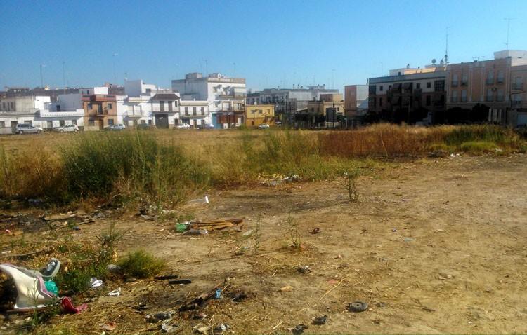 Podemos alerta de un «serio y grave problema» en la barriada La Paz, por «gran abundancia de ratas»