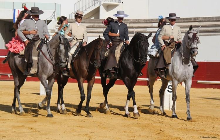 Cabra acusa al presidente de Equus de desentenderse del concurso de caballos y de «presiones» a los concursantes (AUDIO)