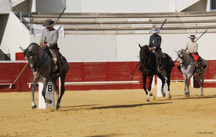 El presidente de Equus desmonta las acusaciones de Cabra, niega presiones y recuerda que el concurso ha costado «el doble»