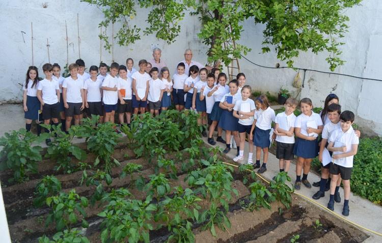 Un huerto cultivado por niños en el colegio Sagrada Familia