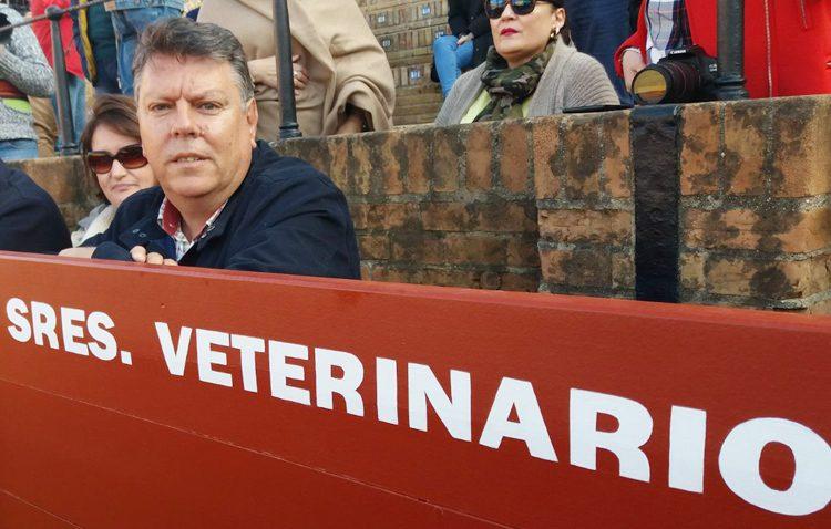 Alfredo Luzardo, un utrerano de adopción que forma parte del equipo de veterinarios de la Real Maestranza de Sevilla