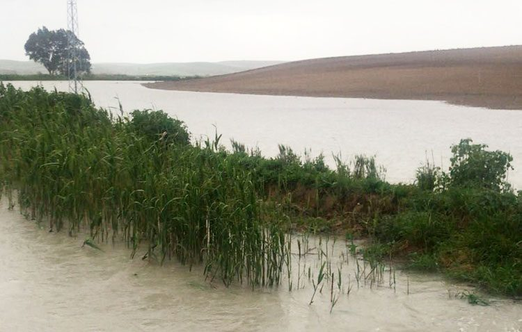 Desalojada una familia ante posibles inundaciones por el desbordamiento del pantano Torre del Águila