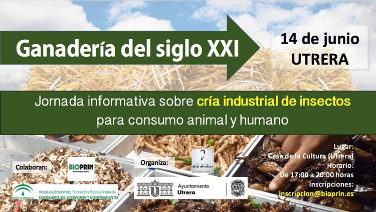 El Ayuntamiento organiza una charla sobre la cría de insectos para consumo animal y humano