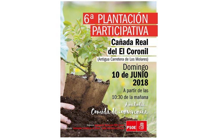 El PSOE organiza una plantación de árboles en Vistalegre