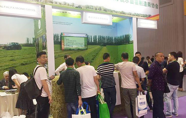 La alfalfa utrerana se abre hueco en el mercado asiático