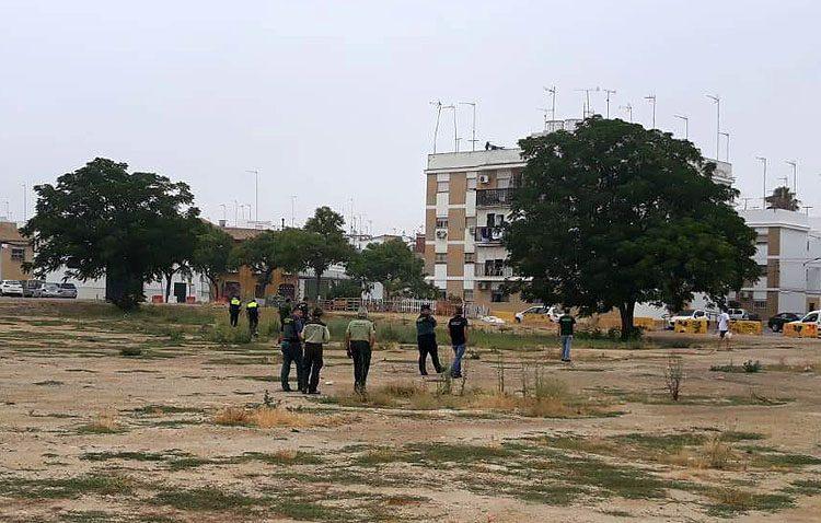 El rastreo de los cuerpos de seguridad descarta la presencia de comida envenenada en la zona del Matadero