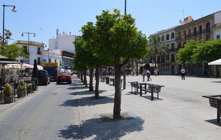 La plaza del Altozano nivelará su acera y adoquinado, y retirará los naranjos para quedar situados en maceteros