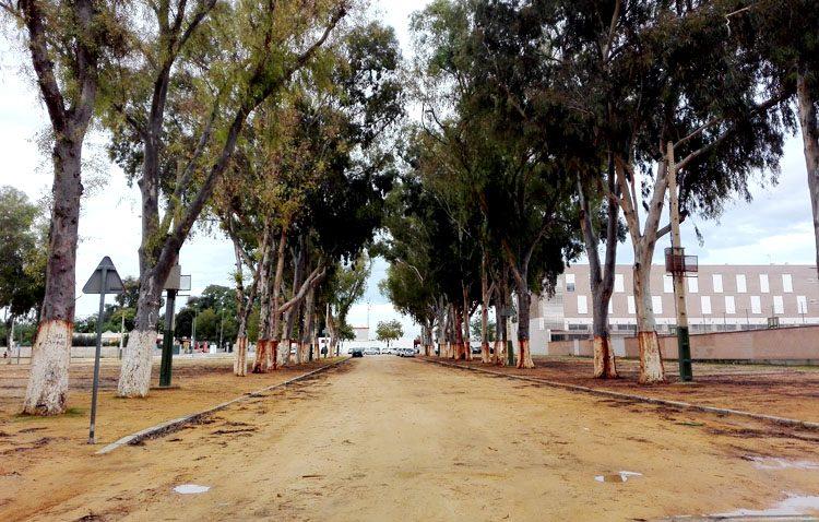 Villalobos anuncia la reurbanización del recinto ferial de Utrera y la eliminación del albero en las calles
