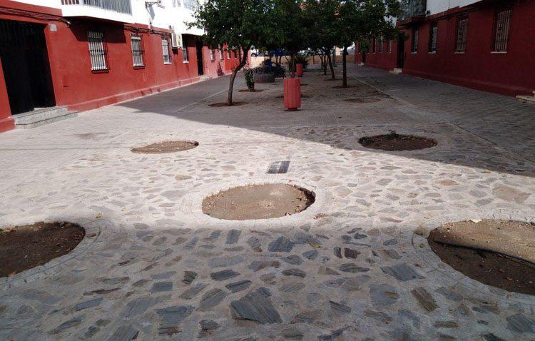 Podemos denuncia la «lamentable situación» del arbolado de Utrera y cifra en 500 los alcorques vacíos