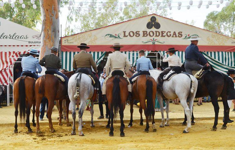 Un llamamiento al cuidado de los caballos durante la Feria de Consolación