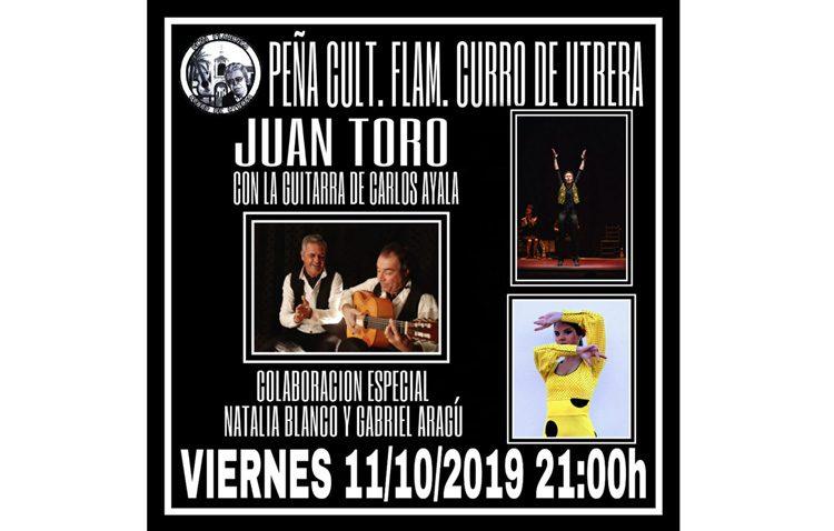 Una nueva noche flamenca en la peña «Curro de Utrera»