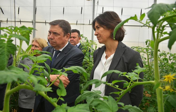 El ministro de Agricultura visita en Utrera el único centro de investigación y desarrollo de la multinacional BASF en España
